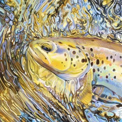 Brown Trout 3